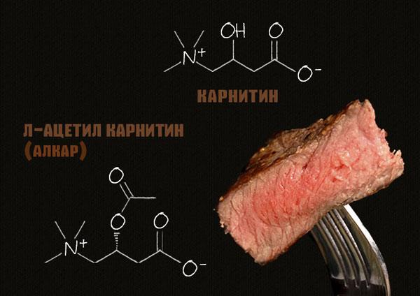 Как принимать L-карнитин. Мясо - источник l-карнитина.