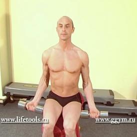 Комплекс упражнений с гантелями. Бицепс с гантелями сидя.
