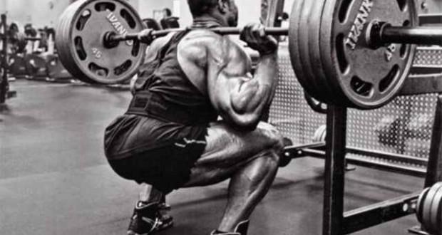 С каких мышц начать тренировку