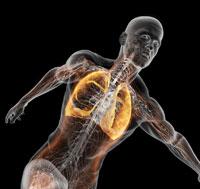 Как дышать при выполнении упражнений?