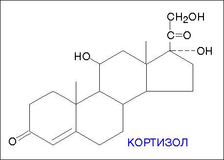 Гормон кортизол