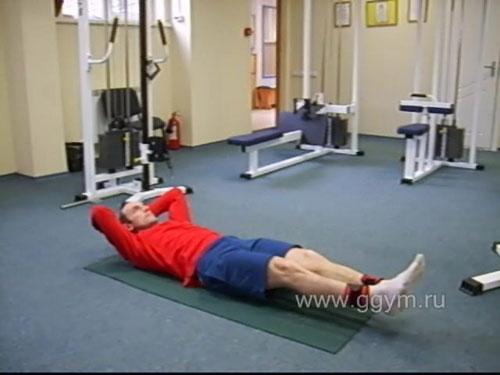 Комплекс упражнений с гантелями для начинающих. Тренировка пресса.