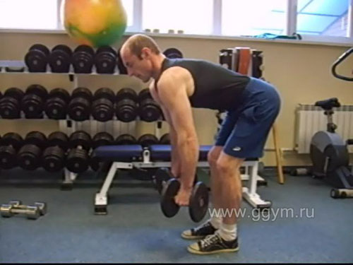 Комплекс упражнений с гантелями для начинающих. Тяга в наклоне.