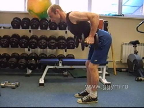 Комплекс упражнений с гантелями для начинающих. Тяга гантелей в наклоне.