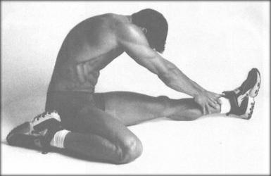 Правила растяжки мышц