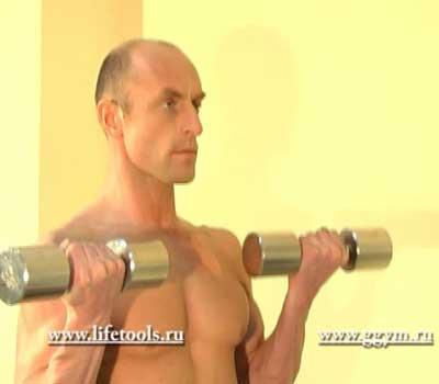 Упражнение с гантелями - сгибания рук с супинацией
