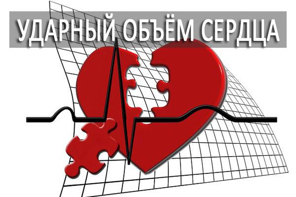 Ударный объём сердца