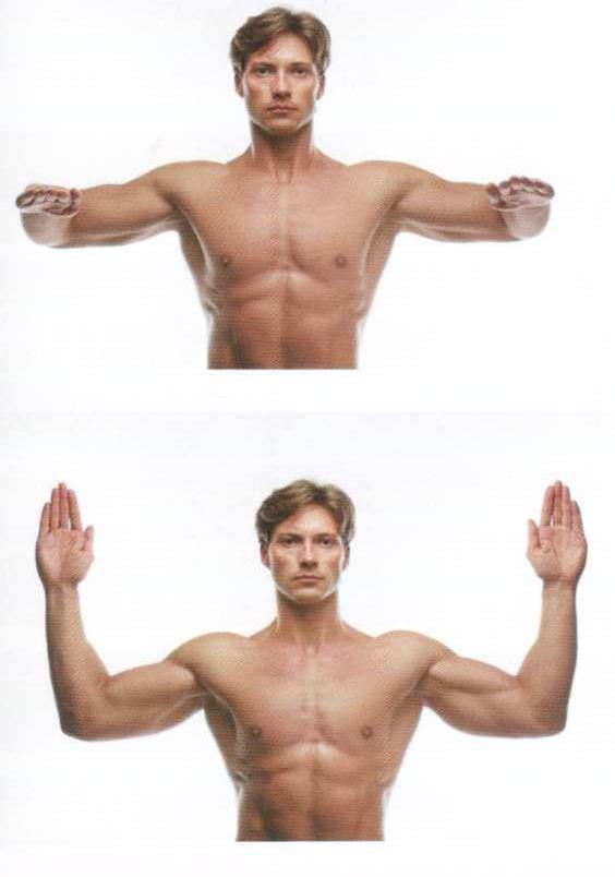 Супинация плеча