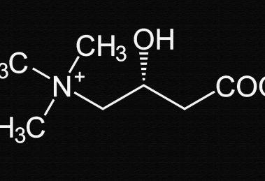 Как принимать L-карнитин