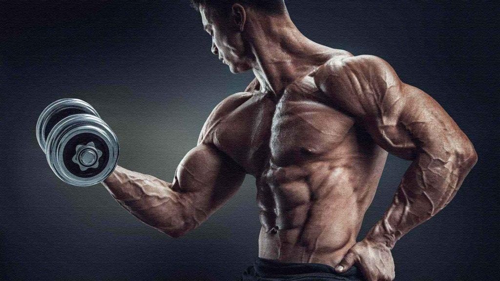 Мышечная масса, как набрать мышечную массу
