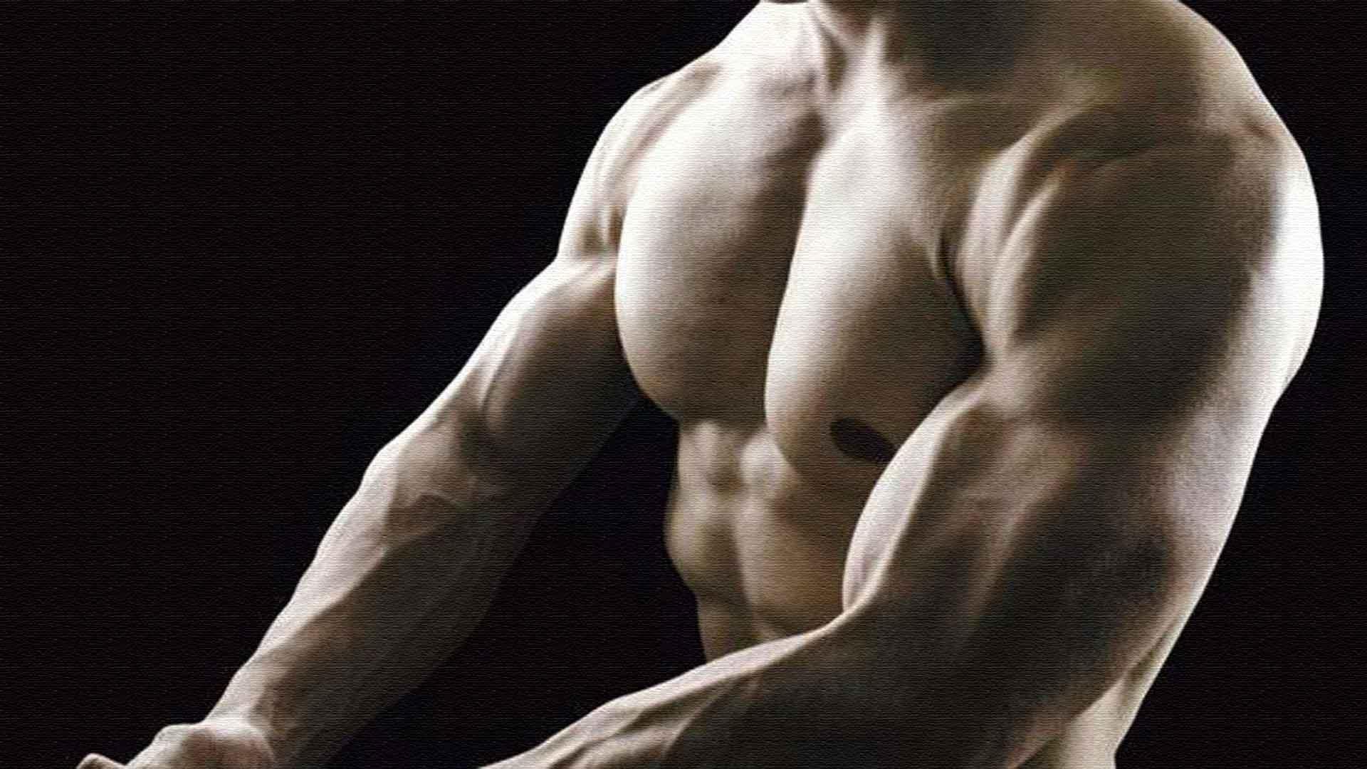 мускулистое мужское тело