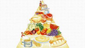 Что такое пищевая пирамида?