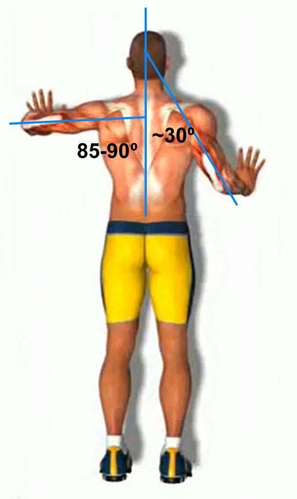 Положение рук при отжиманиях