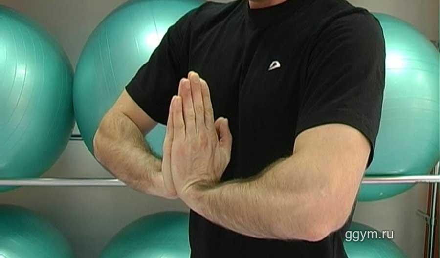 Растяжка мышц предплечий