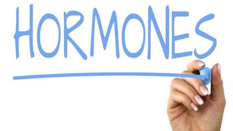 Как работают гормоны в организме человека