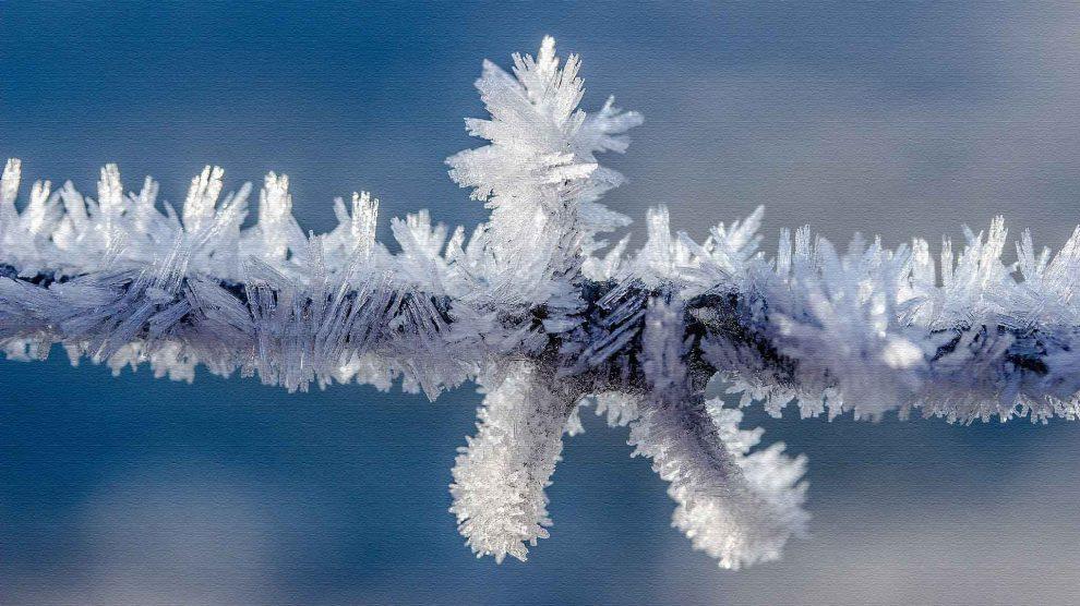 Как подготовить организм к зиме?