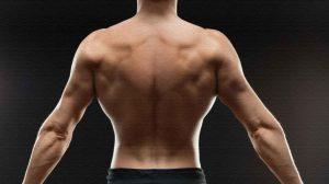 Пять лучших упражнений для широчайших мышц