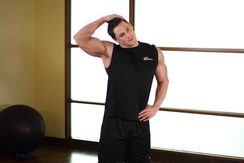 Растяжка для мышц шеи