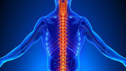 Почему болит спина и что с этим делать?